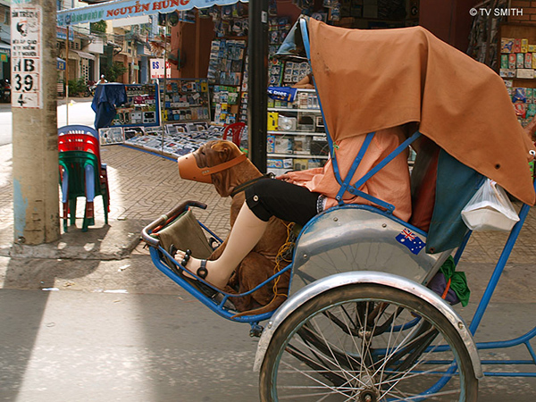 A dog in Saigon